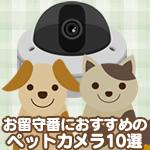 お留守番におすすめのペットカメラ10選